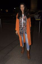 Evelyn Sharma snapped at airport on 13th Oct 2016 (39)_5800c53bbbc1a.JPG