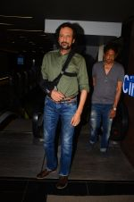 Kay Kay Menon at Saat Ucchakey premiere in Mumbai on 12th Oct 2016 (13)_58005b2628c1a.JPG