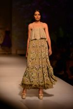 Model walk the ramp for Asheema Leena show on day 2 of AIFW on 14th Oct 2016 (17)_580213b1cb9ef.jpg
