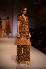 Model walk the ramp for Asheema Leena show on day 2 of AIFW on 14th Oct 2016 (23)_580213ea96f74.jpg