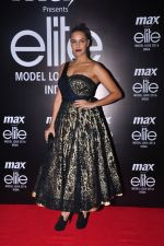 Neha Dhupia at Max Elite contest on 14th Oct 2016 (24)_58021d6ea21d9.JPG