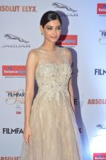 Diana Penty at Filmfare Glamour & Style Awards 2016 in Mumbai on 15th Oct 2016 (1808)_5804d82aa1d87.JPG