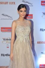 Diana Penty at Filmfare Glamour & Style Awards 2016 in Mumbai on 15th Oct 2016 (1809)_5804d82c6d997.JPG