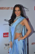 Elli Avram at Filmfare Glamour & Style Awards 2016 in Mumbai on 15th Oct 2016 (1621)_5804d84203f50.JPG