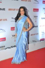 Elli Avram at Filmfare Glamour & Style Awards 2016 in Mumbai on 15th Oct 2016 (1622)_5804d842ebc29.JPG