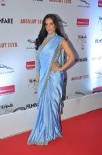 Elli Avram at Filmfare Glamour & Style Awards 2016 in Mumbai on 15th Oct 2016 (1624)_5804d8460d91b.JPG