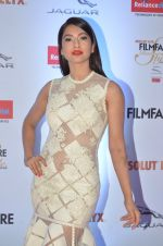 Gauhar Khan at Filmfare Glamour & Style Awards 2016 in Mumbai on 15th Oct 2016 (1139)_5804d8554fc1d.JPG