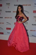 Katrina Kaif at Filmfare Glamour & Style Awards 2016 in Mumbai on 15th Oct 2016 (1951)_5804da9951d97.JPG