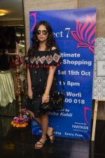 Roshni Chopra at Project 7 exhibition day 2 on 15th Oct 2016 (35)_5804a4d97af16.JPG