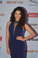 Saiyami Kher at Filmfare Glamour & Style Awards 2016 in Mumbai on 15th Oct 2016 (1296)_5804dba293352.JPG