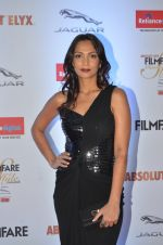 Shamita Singha at Filmfare Glamour & Style Awards 2016 in Mumbai on 15th Oct 2016 (1126)_5804dbbf5352f.JPG
