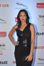 Shamita Singha at Filmfare Glamour & Style Awards 2016 in Mumbai on 15th Oct 2016 (1127)_5804dbc02c974.JPG