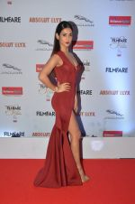 Sonal Chauhan at Filmfare Glamour & Style Awards 2016 in Mumbai on 15th Oct 2016 (1875)_5804dbe0d1e17.JPG