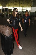 Amy Jackson snapped at airport on 21st Oct 2016 (22)_580b5ce1c8004.JPG