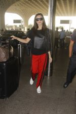 Amy Jackson snapped at airport on 21st Oct 2016 (24)_580b5ce387e7f.JPG