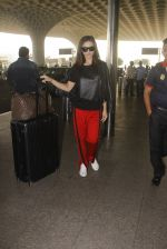 Amy Jackson snapped at airport on 21st Oct 2016 (25)_580b5ce437236.JPG