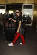Amy Jackson snapped at airport on 21st Oct 2016 (31)_580b5ce9a01ae.JPG