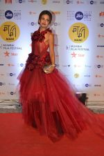 michelle poonawala at MAMI Film Festival 2016 on 20th Oct 2016 (327)_580b0268643c3.JPG