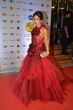 michelle poonawala at MAMI Film Festival 2016 on 20th Oct 2016 (329)_580b026a992b5.JPG
