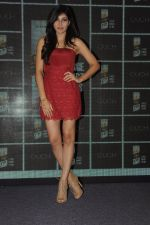 Pooja Chopra at Royal Stag event on 22nd Oct 2016 (62)_580c5bc75fac0.JPG
