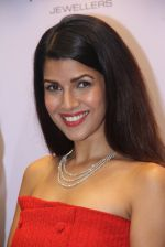 Nimrat Kaur at the launch of festive collection in association with forever Diamonds and Notandas Jewellers on 24th Oct 2016 (18)_580f63bd0f72d.JPG