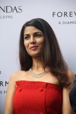 Nimrat Kaur at the launch of festive collection in association with forever Diamonds and Notandas Jewellers on 24th Oct 2016 (5)_580f63b4763bf.JPG