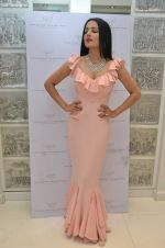 Celina Jaitley at the launch of a new jewellery line of designer Paulomi Sanghavi in Mumbai on 27th Oct 2016 (29)_58131a712c968.JPG
