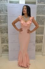 Celina Jaitley at the launch of a new jewellery line of designer Paulomi Sanghavi in Mumbai on 27th Oct 2016 (30)_58131a725b1b4.JPG
