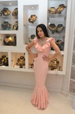 Celina Jaitley at the launch of a new jewellery line of designer Paulomi Sanghavi in Mumbai on 27th Oct 2016 (48)_58131a839117d.JPG