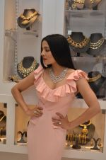 Celina Jaitley at the launch of a new jewellery line of designer Paulomi Sanghavi in Mumbai on 27th Oct 2016 (49)_58131a845fb66.JPG