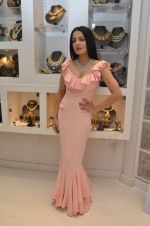Celina Jaitley at the launch of a new jewellery line of designer Paulomi Sanghavi in Mumbai on 27th Oct 2016 (50)_58131a8512160.JPG