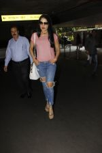 Celina Jaitley snapped at airport on 26th Oct 2016 (22)_5812f3631622e.JPG