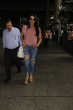 Celina Jaitley snapped at airport on 26th Oct 2016 (24)_5812f3686da60.JPG