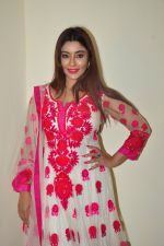Payal Ghosh Diwali Shoot on 26th Oct 2016 (37)_5812f9896fb40.JPG