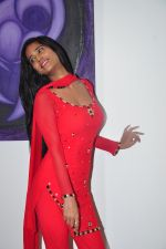 Poonam Pandey Diwali Shoot on 26th Oct 2016 (18)_5812f99d8dd68.JPG
