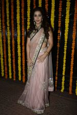 Krishika Lulla at Ekta Kapoor_s Diwali bash on 29th Oct 2016 (325)_581735339051b.JPG