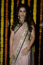 Krishika Lulla at Ekta Kapoor_s Diwali bash on 29th Oct 2016 (329)_58173535d5c26.JPG
