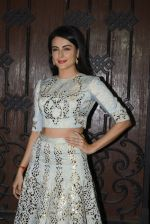 Mandana Karimi at Anil Kapoor_s Diwali bash on 30th Oct 2016 (35)_58174cd97cb34.JPG