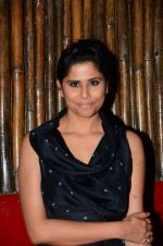Sai Tamhankar at Prithvi festival opening in Mumbai on 3rd Nov 2016 (56)_581c30af3adaf.JPG