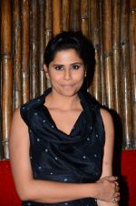 Sai Tamhankar at Prithvi festival opening in Mumbai on 3rd Nov 2016 (57)_581c30afe0715.JPG