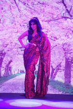 Chitrangada Singh walks for Intrika Show on 9th Nov 2016 (54)_58247b564ca9c.JPG