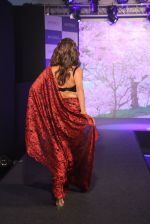 Chitrangada Singh walks for Intrika Show on 9th Nov 2016 (62)_58247b5b3fe62.JPG