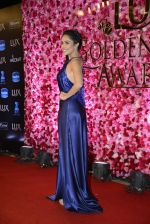 Nushrat Barucha at Lux Golden Rose Awards 2016 on 12th Nov 2016 (510)_582852dc444ae.JPG