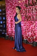 Nushrat Barucha at Lux Golden Rose Awards 2016 on 12th Nov 2016 (511)_582852dd07184.JPG