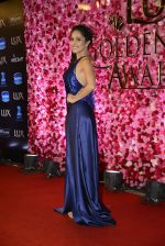 Nushrat Barucha at Lux Golden Rose Awards 2016 on 12th Nov 2016 (513)_582852de7c628.JPG