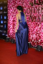 Nushrat Barucha at Lux Golden Rose Awards 2016 on 12th Nov 2016 (514)_582852e010f18.JPG