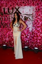 Sonnalli Seygall at Lux Golden Rose Awards 2016 on 12th Nov 2016 (70)_582856eec9d39.JPG
