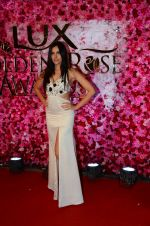 Sonnalli Seygall at Lux Golden Rose Awards 2016 on 12th Nov 2016 (71)_582856efb09a5.JPG