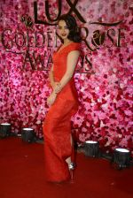 Surveen Chawla at Lux Golden Rose Awards 2016 on 12th Nov 2016 (1104)_582854bf0489e.JPG