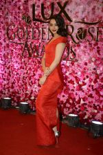 Surveen Chawla at Lux Golden Rose Awards 2016 on 12th Nov 2016 (1106)_582854c0e8e42.JPG